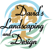 David's Landscaping and Design